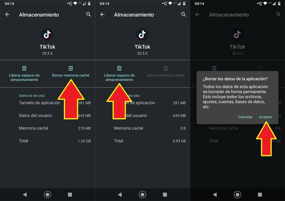 Borrar errores app TikTok