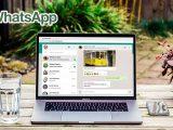 Como descargar imagenes de WhatsApp Web en PC